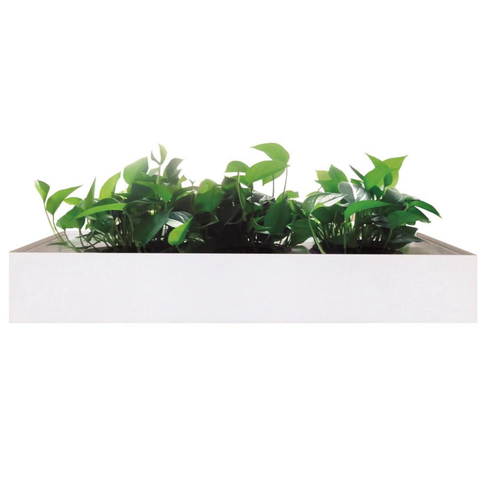 Milano 900w Planter Box