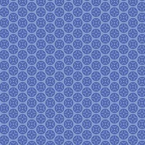 Northcott Botanical Blues 20464-44 Blue Circles