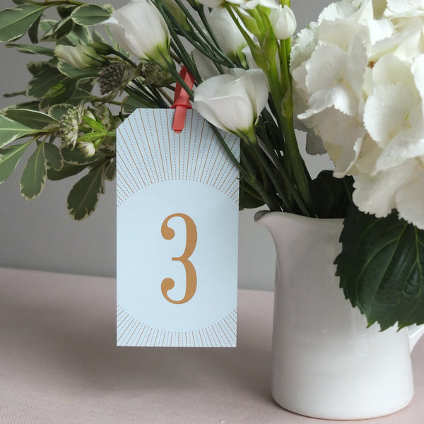 Pack of DECOdence Tag Table Numbers, 5 colour options
