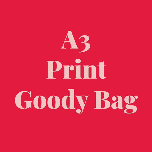 A3 Print Goody Bag *SAMPLE SALE*