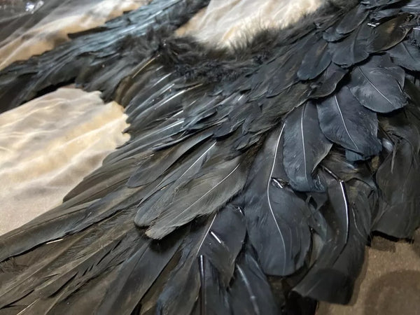 All Blakc Feather Wings.
