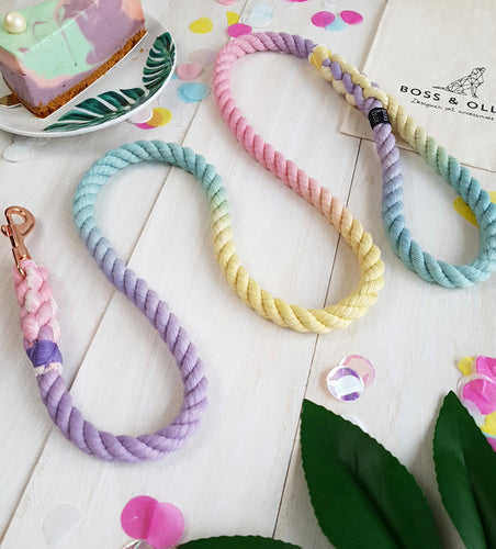 Pastel Swirl: Summer Rainbow Leash