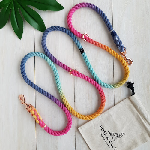 Melted Crayons : Autumn Rainbow Leash