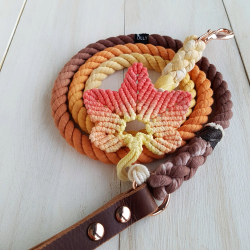 Pumpkin Spice leash with maple leaf accessory: Autumn Special
