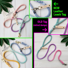 Customise a Solid colour leash