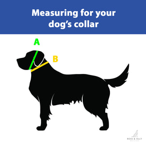 Waterproof Martingale Collar