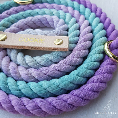 Mermaid Leash