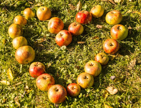 an image of apples in the shape of a heart