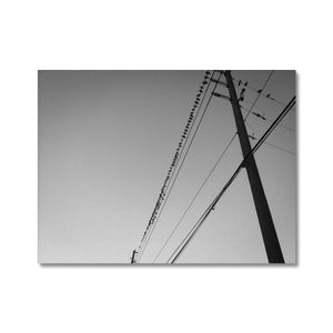 Open image in slideshow, Framed Canvas Print - Birds On A Wire | A Deal Each Week