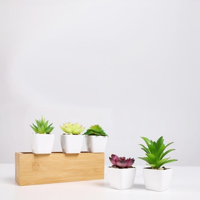 Small Artificial Succulent Plants | A Deal Each Week