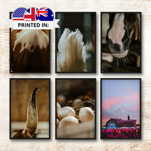 Canvas Print - On The Farm | A Deal Each Week.