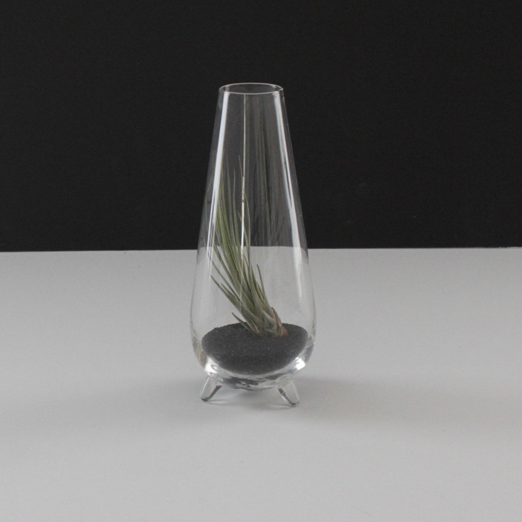 Teardrop Footed Terrarium