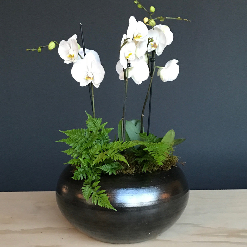 Orchids in Risom Bowl
