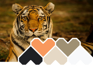 Colour Inspiration ~ February 'Animalistic'