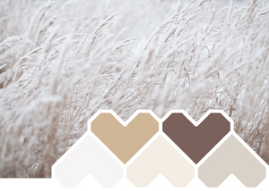 Colour Inspiration ~ November 'Natural Neutrals'