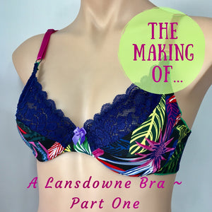 The Making of ~ A Lansdowne Bra ~ Part One