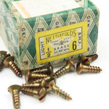 "29 Nettlefolds Light BMA Brass Screws ½"" x 6 - OldTools.co.uk"