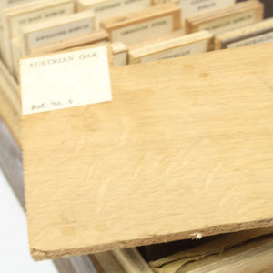 44 Plywood Samples Set - OldTools.co.uk