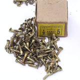 "25 Nettlefolds Brass Screws - 1/2"" No.5 - OldTools.co.uk"