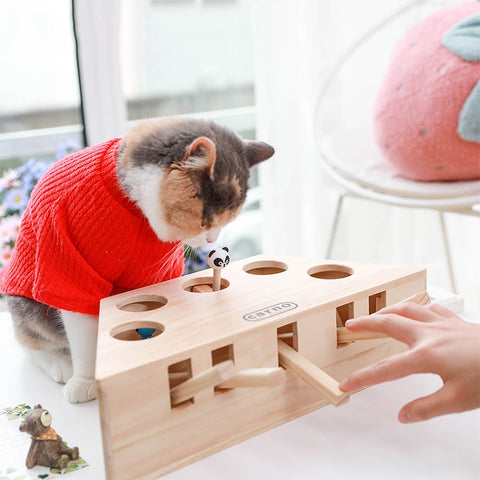 Wooden Pop Up Interactive Toy - Catsup Cat Co
