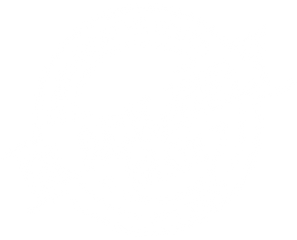 Black Belt and Main