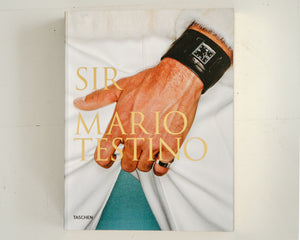 Load image into Gallery viewer, MARIO TESTINO, SIR