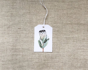 Load image into Gallery viewer, GIFT TAG | PROTEA