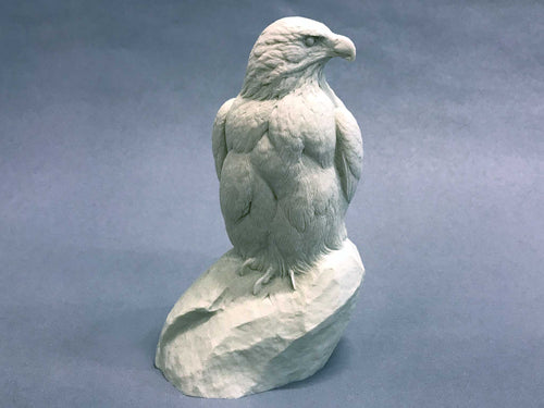 Bald Eagle 1/4 scale Cast