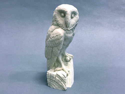Barn Owl 1/3 scale Cast