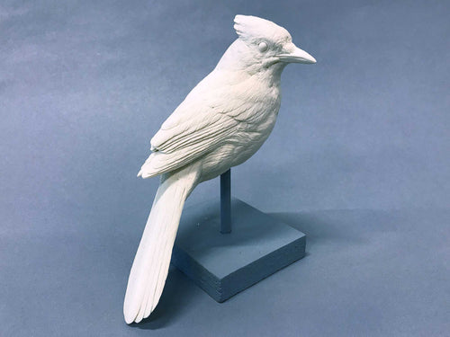 Bluejay 3/4 scale Cast