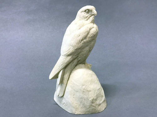 American Kestrel on rock 1/2 scale Cast
