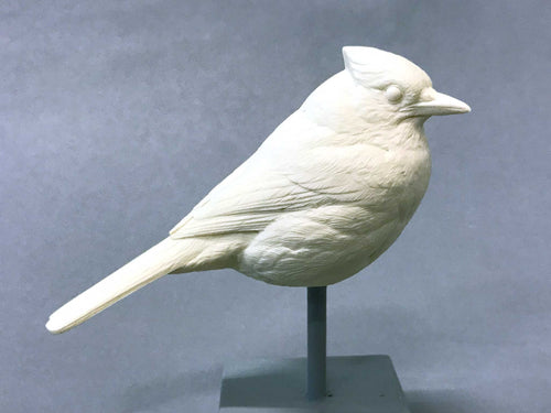 Bluejay 1/2 scale Cast