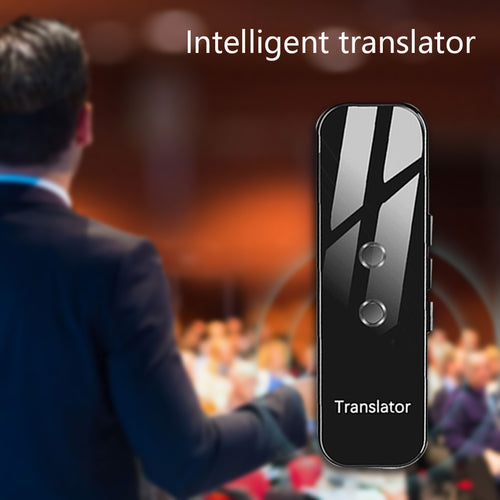 Portable audio translator