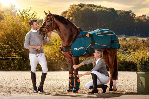 Bemer Horse Set - Includes Blanket & 2 Cuffs
