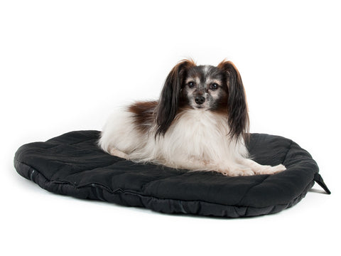 Back on Track Therapeutic Dog Travel Bed
