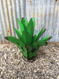 Recycled Metal Mini Agave
