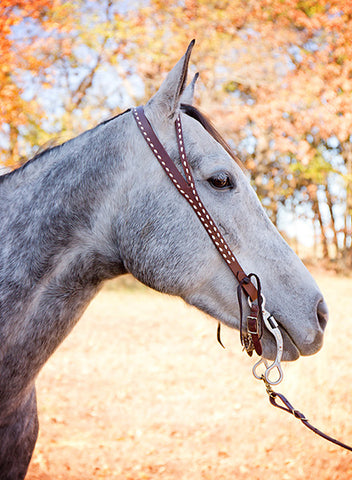 Split Ear Headstall w/ White Buckstich