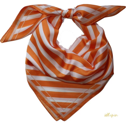 Whipin Sunset Stripe Wild Rag
