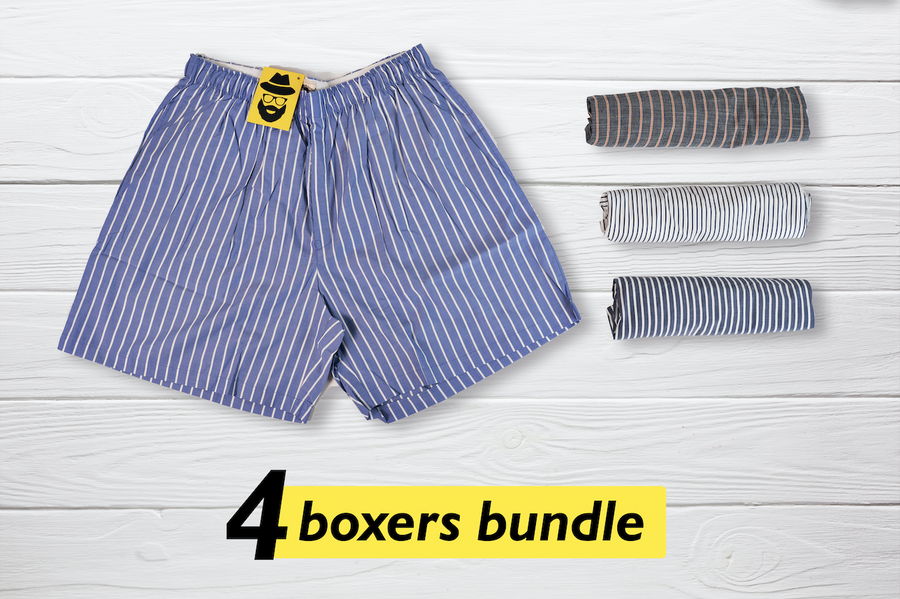 Vier Set of 4 Boxers - Large