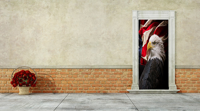 4th of july door cover