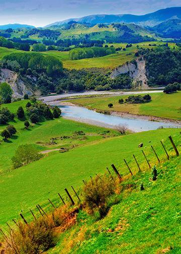 New Zealand's Nature and River