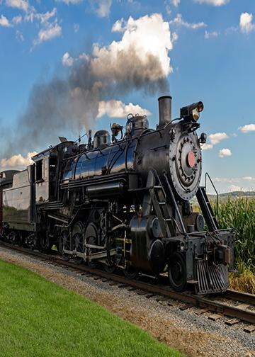 The Steam Train