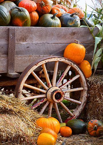 Wagon Full of Pumpkins, DoorWrap - Door Decoration
