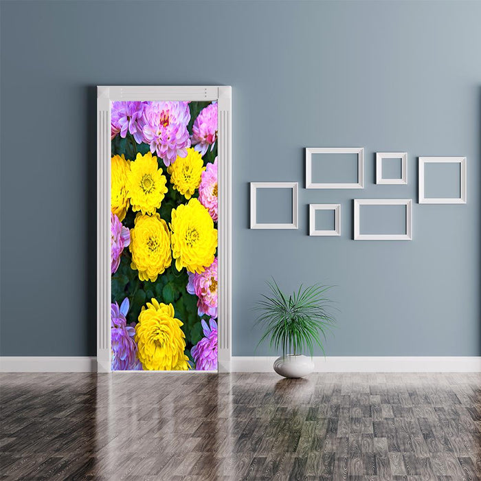 Asters Door Flower
