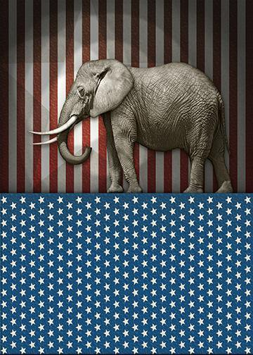 Stars & Stripes Republican Elephant, DoorWrap - Door Decoration