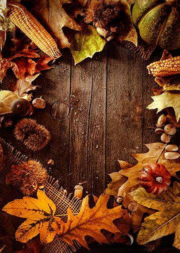 Autumn Fruit on Wood, Door Cover - Door Decoration