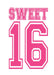 Pink Sweet 16, Door Cover - Door Decoration
