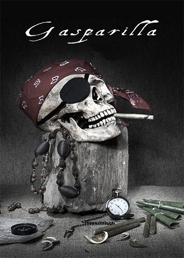 Gasparilla Pirate 2021