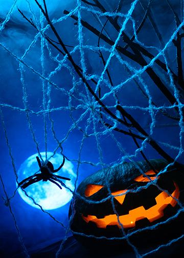 Spider Web with Pumpkin, DoorWrap - Door Decoration