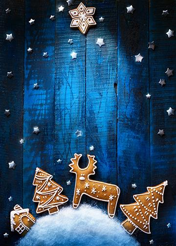 Customizable - Blue Christmas